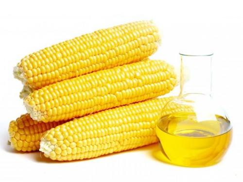 Кукуруза и кукурузное масло