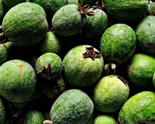 Зеленый плоды фейхоа