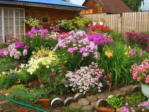 Цветы в открытом грунте