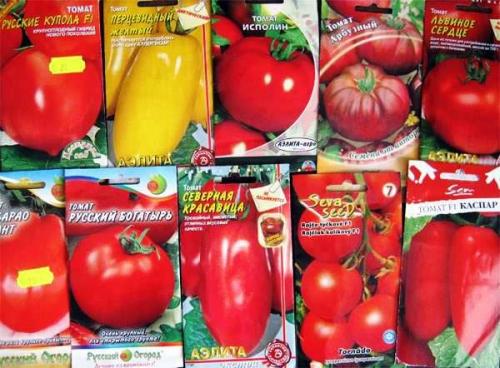 Семена помидоров для открытого грунта