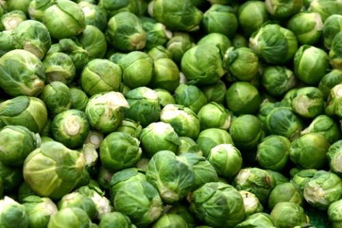 Собранный урожай брюссельской капусты