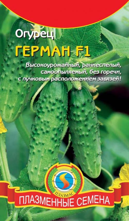 Семена огурцов для Сибири