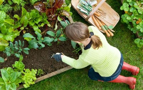 Девушка высаживает растения