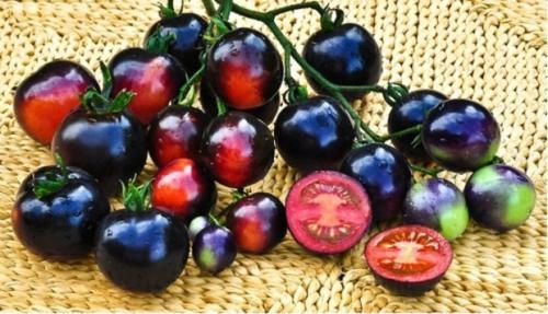 Черные помидоры в разрезе